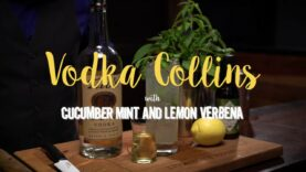 Vodka Collins